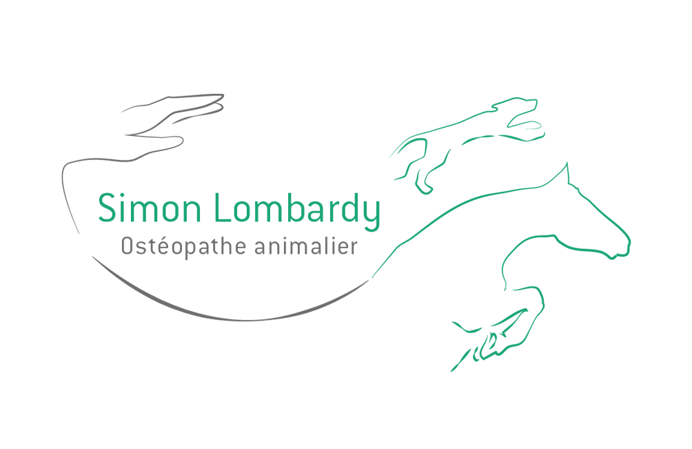 Osteopathe animalier Toulouse - Simon Lombardy