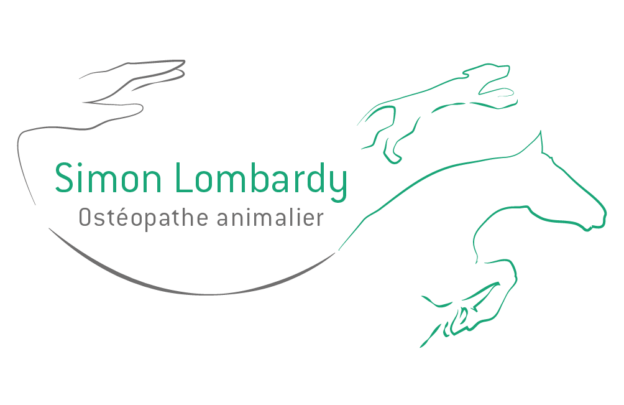 simon_lombardy_osteopathe_equin_toulouse